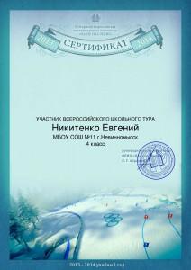 Никитенко Евгений_Сертификат_