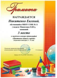 Чижова А. 9а класс